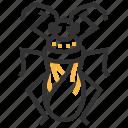 bug, velvet, water, animal, insect