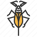 animal, bug, insect, water icon