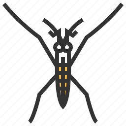 animal, bug, insect, strider, water icon