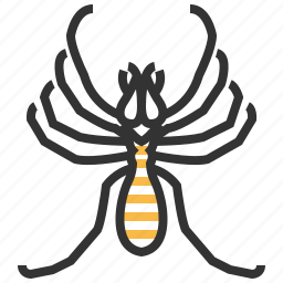 animal, bug, insect, scorpion, wind icon