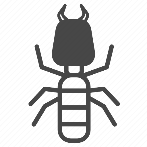 ant, insect, pest, pest control, termite icon