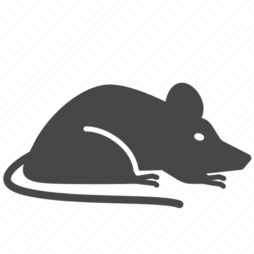 animal, insect, mice, pest, pest control, rat icon