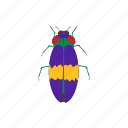 beetle, bug, cartoon, dor, insect, mite, virus icon