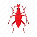 beetle, bug, cartoon, insect, mite, nature, virus icon