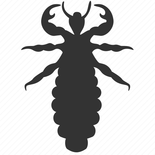 ant, ant hill, bug, exterminator, insect, termite, white ant icon
