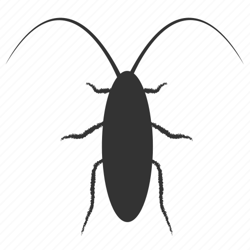 bug, cockroach, cockroaches, insect, insect pests, insect prohibition, stop icon
