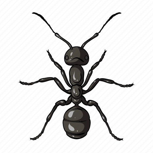 animal, ant, arthropod, insect icon