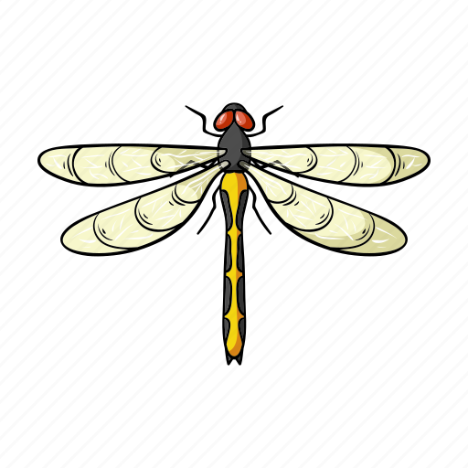 animal, arthropod, dragonfly, insect icon