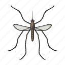animal, arthropod, gnat, insect, mosquito icon