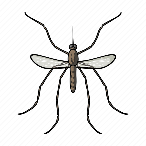Animal, arthropod, gnat, insect, mosquito icon - Download on Iconfinder