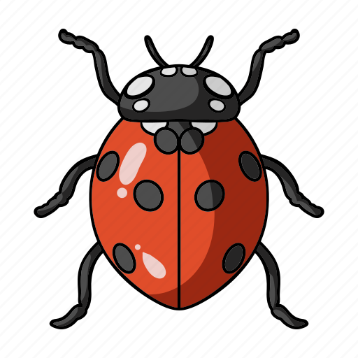 Animal, arthropod, insect, ladybird, ladybug icon - Download on Iconfinder