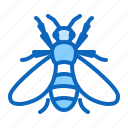 bee, honeybee, insect icon