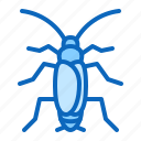 cockroach, insect, pest, roach icon