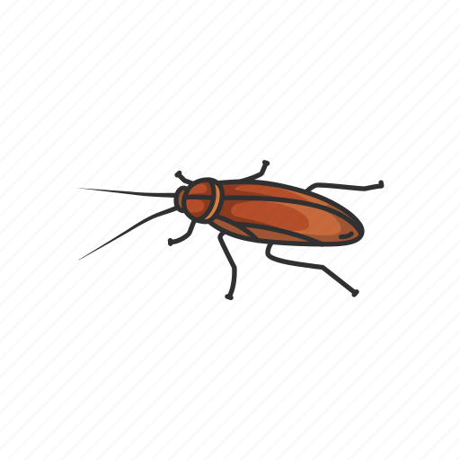 animal, bug, cockroach, insect, pest, ship cockroach, waterbug icon