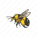 animal, bee, beeswax, flying insect, honey bee, insect, pest icon