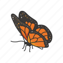 animal, butterfly, flying insects, insects, moth, pest, skipper icon
