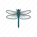 animal, damselfly, dragonfly, emerald damselfly, insects, nymph icon