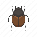 animal, beetle, dung beetle, dwellers, insects, rollers, tunnelers icon