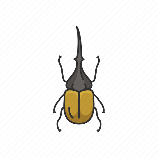 animal, beetle, hercules beetle, insects, rhinoceros beetle, unicorn beetle icon