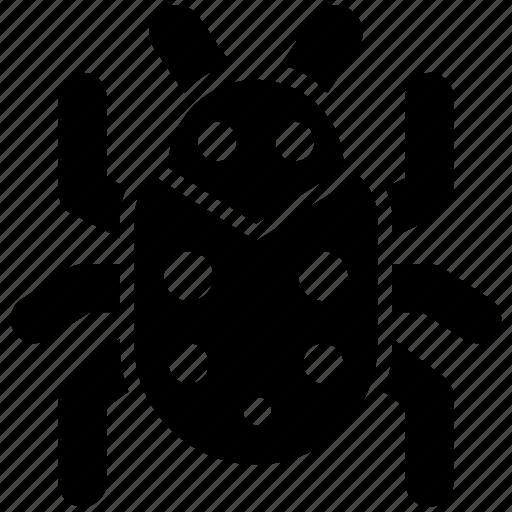 bug, fixing, repair icon