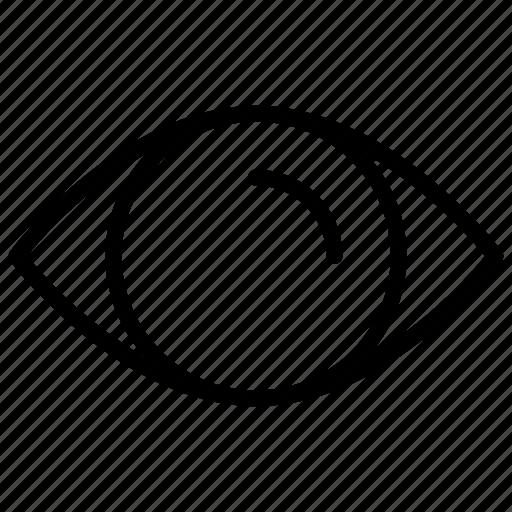 eye, hidden, organ, retina, view icon