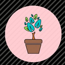flower, leaf, plant, tree icon