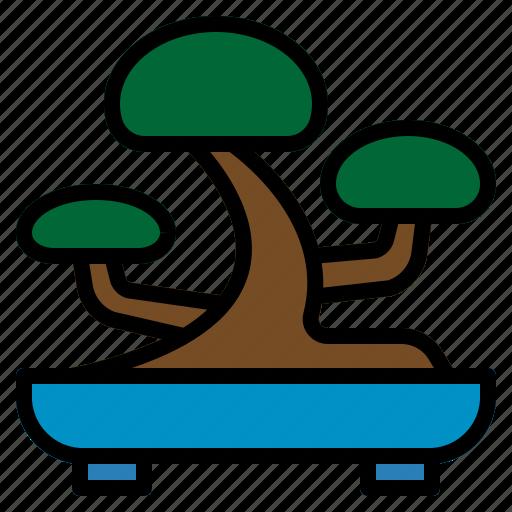 bonsai, japanese, planting, small, tray, tree icon