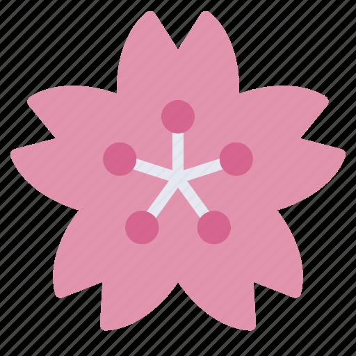 Blossom Cherry Flower Japan Pink Sakura Spring Icon