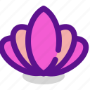 asia, china, flower, relax, therapy icon