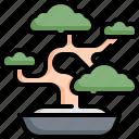 bonsai, environment, japan, leaf, nature, plant, tree icon