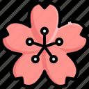 asian, bloom, blossom, japan, japanese, sakura icon