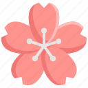 blossom, flower, japan, japanese, nature, sakura icon