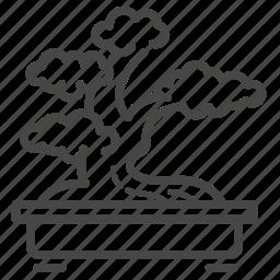 art, bonsai, cultivation, japan, japanese, plant, tree icon