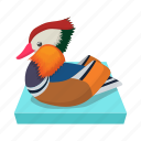 blue, cartoon, duck, lake, mandarin, sign, style icon