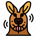 kangaroo, eat, animal, mammal, head
