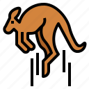 kangaroo, jumping, animal, mammal, macropus