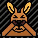 kangaroo, shy, animal, mammal, head