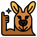 kangaroo, thumbs, up, good, animal, mammal