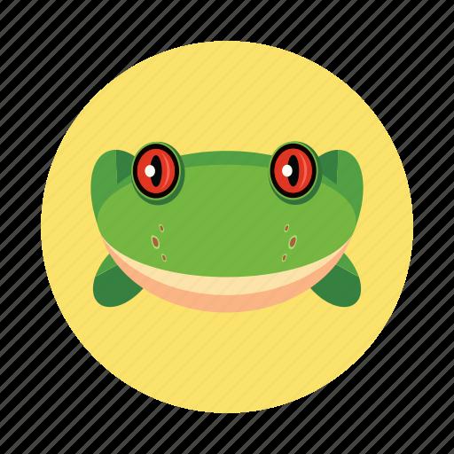 amphibians, animal, children, frog, kids icon
