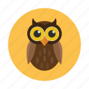 bird, children, kids, nocturnal, owl, owlet icon