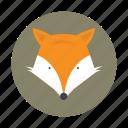 animal, fox, jackal, kids, wolf