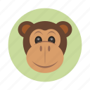 animal, children, jungle, kids, mammals, monkey, toy icon