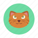 animal, cat, children, kids, pet, toy icon