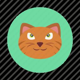 animal, cat, children, kids, pet, toy icon