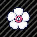 hibiscus, flower, korean, asian