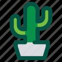 cactus, floral, flower, nature, plant, tree
