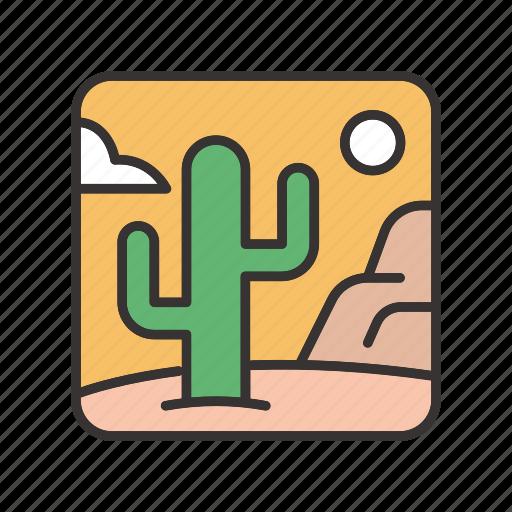 cactus, canyon, desert, landscape, sun icon