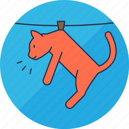 animal, animals, cat, hang, laundry, pet, washing icon