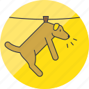 animal, animals, cute, dog, hang, laundry, pet icon