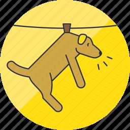 animal, animals, cute, dog, hang, laundry, pet icon